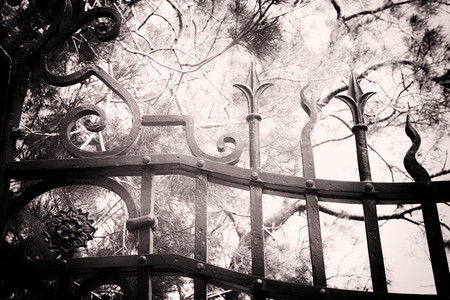 black and white image of garden behind closed gates.