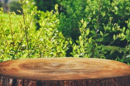 image of wooden table in front green forest trees landscape background. for product display and presentation.