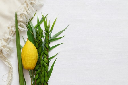 Jewish fall festival of Sukkot. Traditional symbols (The four species): Etrog, lulav, hadas, arava.