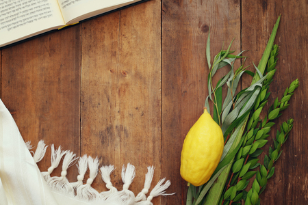 succos: Jewish festival of Sukkot. Traditional symbols (The four species): Etrog, lulav, hadas, arava.