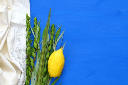 Joods festival van Sukkot. Traditionele symbolen (De vier soorten): Etrog, Lulav, Hadas, Arava.