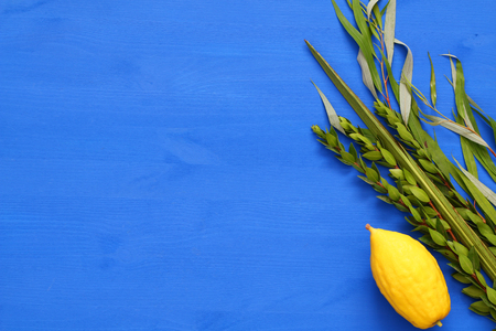Jewish festival of Sukkot. Traditional symbols (The four species): Etrog, lulav, hadas, arava. Stock Photo - 84749209