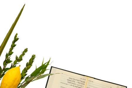 Joods festival van Soekot. Traditionele symbolen (de vier soorten): Etrog, lulav, hadas, arava.
