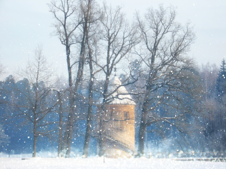 흐릿하고 추상적 인 마법의 겨울 풍경 사진입니다. 반짝이는 오버레이