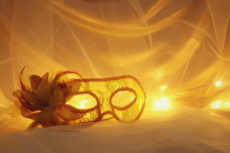 Image of elegant venetian, mask over tulle background