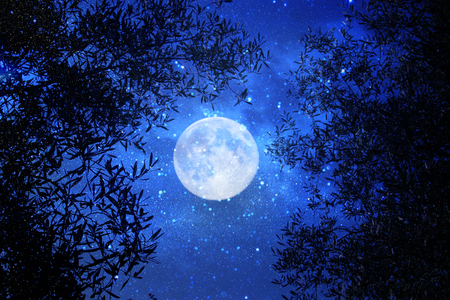 Surreal fantasy concept - full moon with stars glitter in night skies background Stock Photo