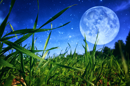 Surreal fantasy concept - full moon with stars glitter in skies background