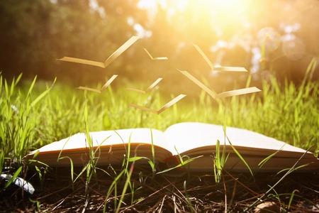 Abra el viejo libro con páginas volando sobre la hierba verde de primavera en el bosque a la luz del sol