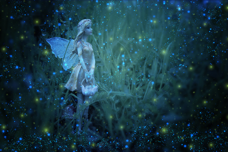 image of magical little fairy in the night forest