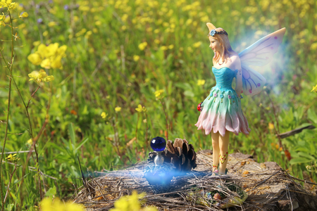 image of magical little fairy in the forest