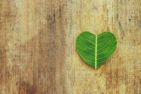 Herzförmiges Blatt über Holztisch. Ökologie- und Gesundheitskonzept Standard-Bild - 97664611