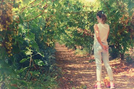 image of a little kid traveling in the vine yard landscape
