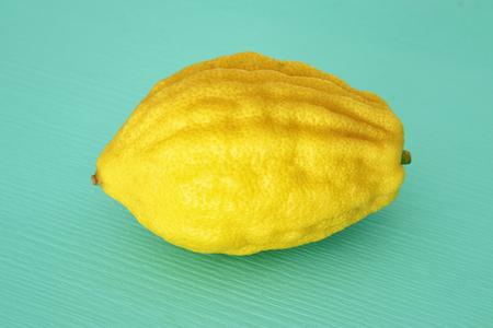 Jewish festival of Sukkot. Etrog (Lemon)Traditional symbol (One of The four species) over mint wooden background 版權商用圖片