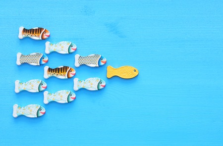 Leadership concept with swimming fish on wooden background. One leader leads others Standard-Bild
