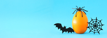 Minimal and funny Halloween holiday concept. Orange egg with spiderweb, bat and spider on top