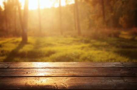 image of front rustic wood boards and background forest.
