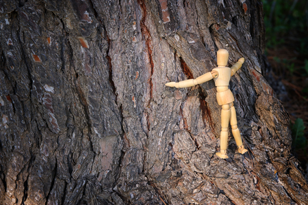 wooden dummy hugging a tree. concept photo of think different and changing perspective Standard-Bild