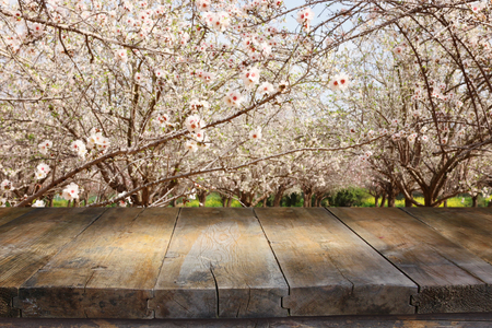 wooden table in front of spring blossom tree landscape. Product display and presentation