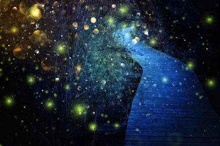 Abstraktes und magisches Bild des Glühwürmchenfliegens im Nachtwald. Märchenkonzept