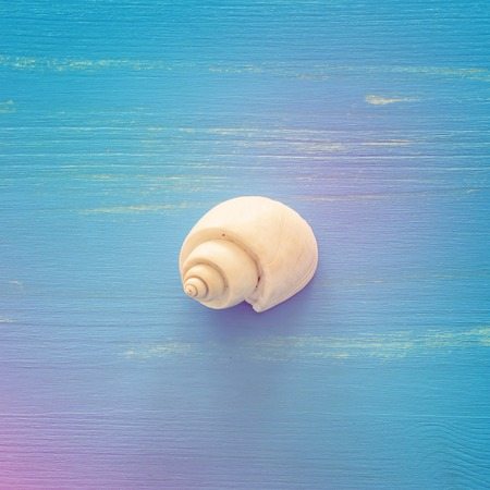 Vacation and summer concept with one white seashell over blue wooden background. Top view flat lay Stock Photo