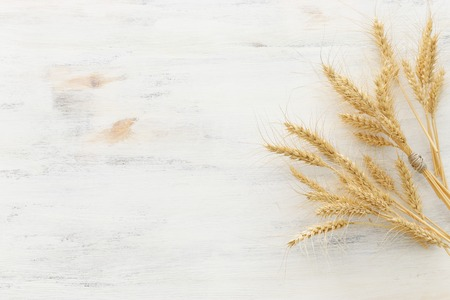 Bovenaanzicht van tarwe gewassen op witte houten achtergrond. Symbolen van Joodse feestdag - Shavuot