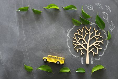 education and back to school concept. Top view photo of school bus next to tree with autumn leaves over classroom blackboard background. top view, flat lay