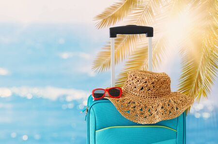 Holidays. Travel concept. Blue suitcase infront of tropical background