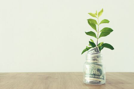 Business image of plant growing in savings jar, money investment and financial growth concept Reklamní fotografie