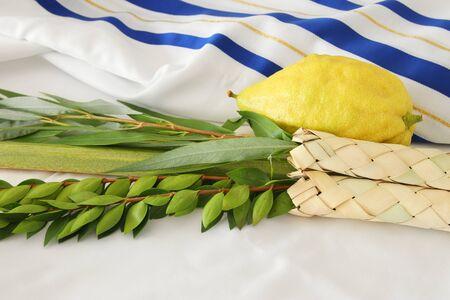 Fête juive de Souccot. Symboles traditionnels (les quatre espèces): Etrog, loulav, hadas, arava