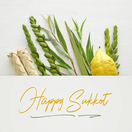 Jewish festival of Sukkot. Traditional symbols (The four species): Etrog, lulav, hadas, arava