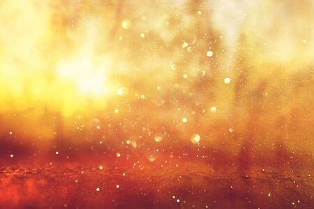Abstract background of light burst among trees and glitter golden bokeh lights Stok Fotoğraf