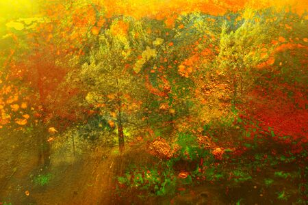 Kunstkonzept der Doppelbelichtung in der Natur. Wald- und Herbstfarben Standard-Bild
