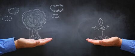 business concept of man hand with drawn small plant on blackboard. growth, teaching and vision metaphor Stok Fotoğraf