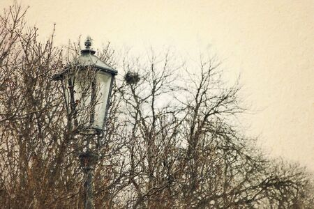 oil painting style illustration of old street lamp and bare trees at winter Archivio Fotografico - 137371266