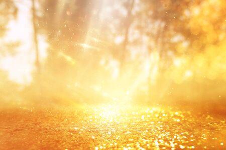 concept background photo of light burst among trees and glitter golden bokeh sparkles Stock fotó