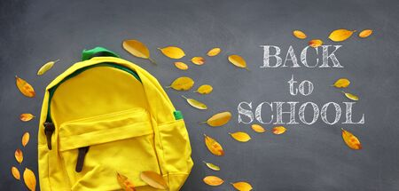 Yellow school bag and dry leaves over blackboard