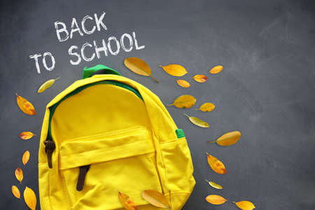 Yellow school bag and dry leaves over blackboard Archivio Fotografico - 150986966