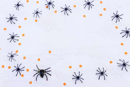 holidays concept of Halloween. spiders over white wooden background. Top view, flat lay