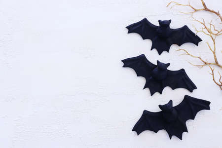 holidays concept of Halloween. Bats over white wooden background. Top view, flat lay