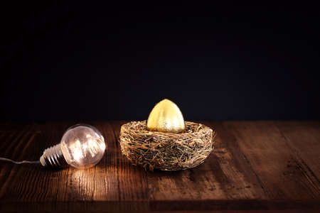 golden egg in nest. Concept of investments, savings and pensions Standard-Bild