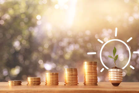 stack of coins with youg growing plant. financial success and managament concept Standard-Bild