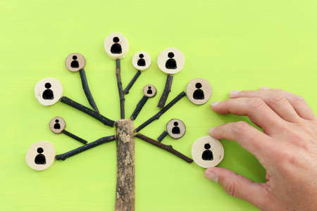 Business image of wooden tree with people icons, human resources and management concept Standard-Bild