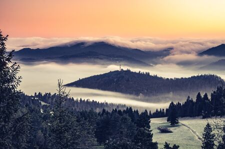 carpathians: Misty mountains landscape in the morning, Poland