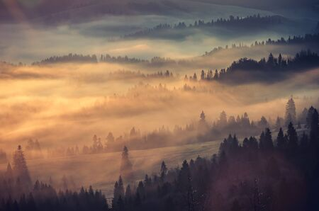 Misty mountain landscape in the morning, Poland 版權商用圖片