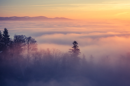 Misty mountain forest landscape in the morning, Poland Stock fotó