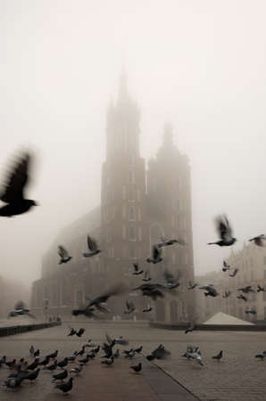 St Mary's church on Krakow Main Square and flying birds (pigeons), Poland.