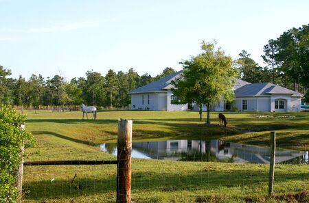 campi�a: Peque�a granja de caballos en la Florida Central mostrando estanque, casa y dos caballos de pastoreo en la parte delantera de pastos.