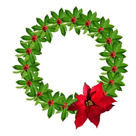 Christmas wreath made of American Holly with a red poinsettia bow. photo