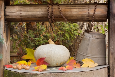 weather beaten: Leaves, walnuts and a pumpkin on an old well