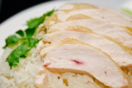 Thai gourmet steamed chicken with rice Stock Photo - 13662697